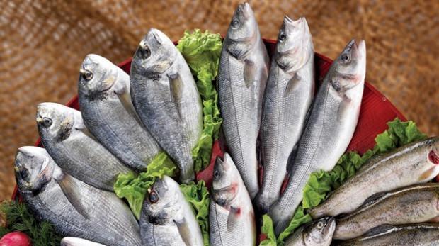 balık zehirlenmesi nedir