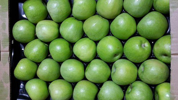 yeşil elma ne işe yarar