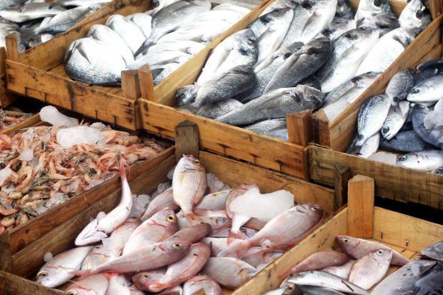 hamilelikte hangi balıklar yenmemeli