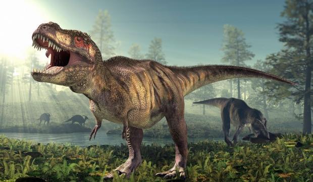T-Rex'lerle ilgili yeni keşif!
