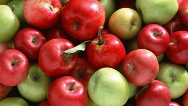 lifli besin en yüksek elma
