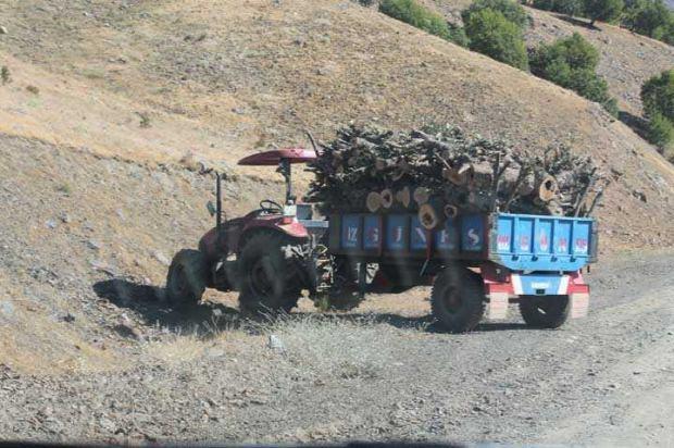 Olay yerinden gelen görüntülerde vatandaşların traktöre yüklediği odunlarda kameralara yansıdı.