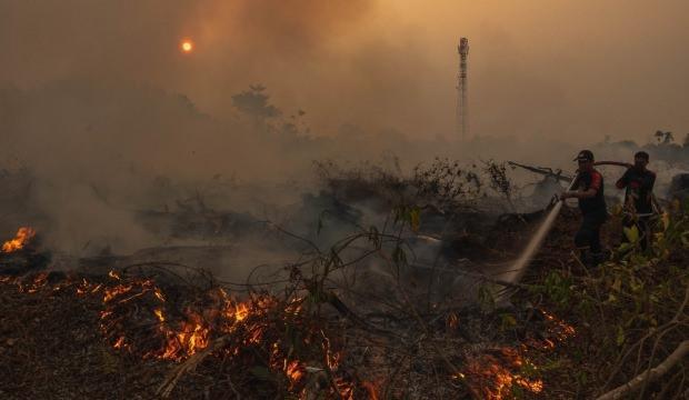 Korkunç rakamı açıkladılar: Binlerce hektar orman kül oldu
