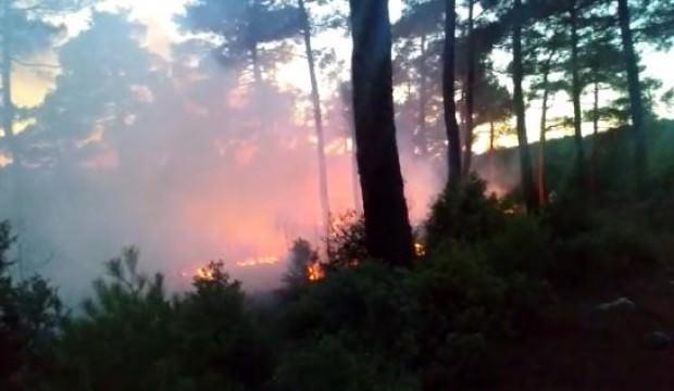 Orhaneli'deki orman yangını büyümeden söndürüldü