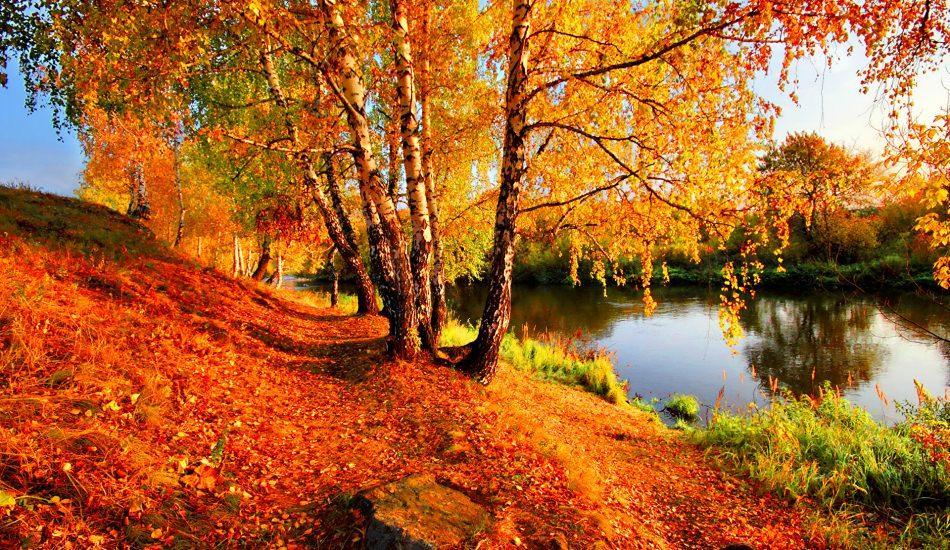 Yalova'nın en güzel yerleri! Yalova'da nereye gidilir? Yalova'da gezilecek yerler...