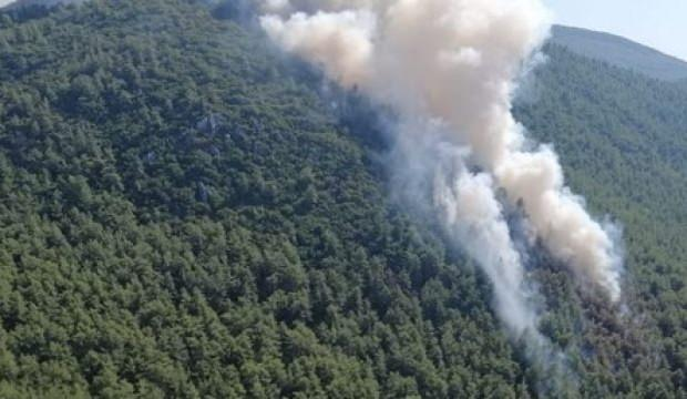 Orman yangınındaki kundaklama iddiasına tutuklama