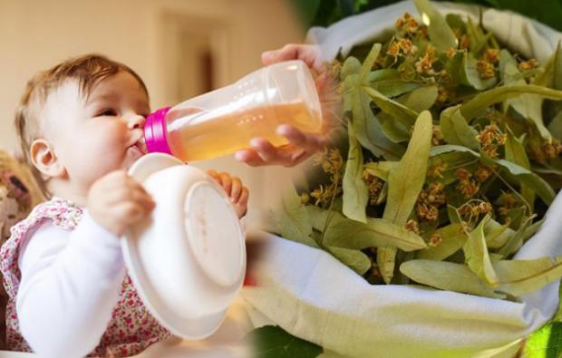 bebeklere ıhlamur çayı