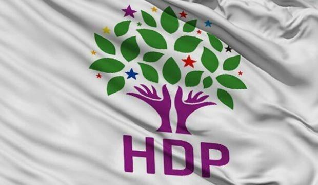 Barış Pınarı Harekatı'yla ilgili HDP'den küstah açıklama