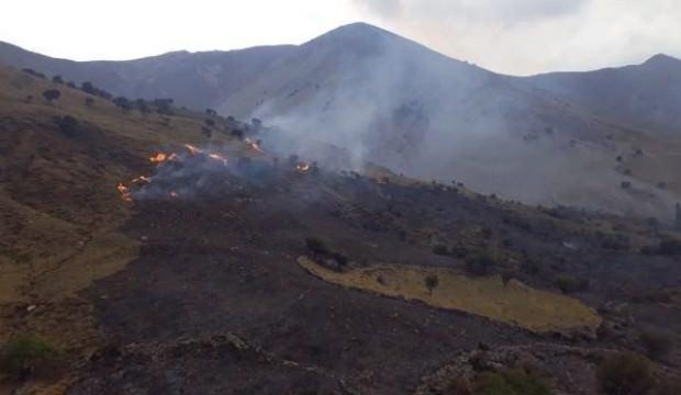 Gökçeada'da 30 hektarlık otluk alan yanarak kül oldu