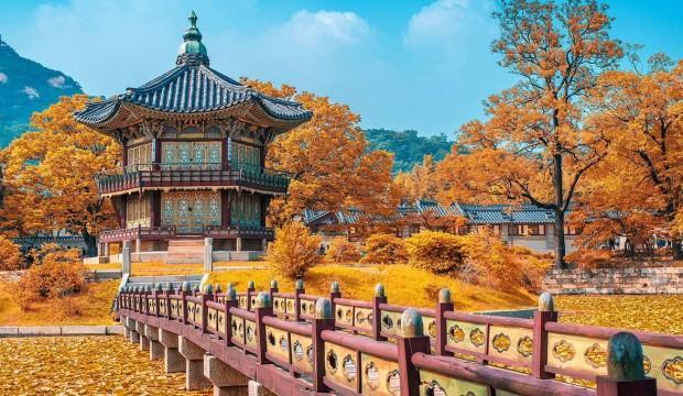 Vize yok! Güney Kore'ye nasıl gidilir? Nereler gezilir?