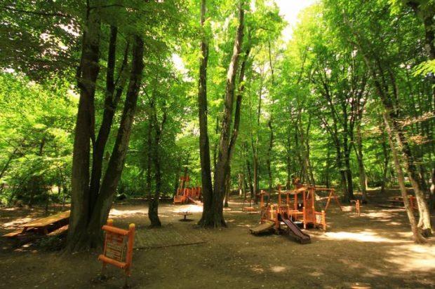 Belgrad Ormanı Neşet Suyu Tabiat Parkı