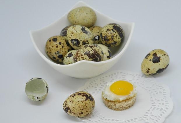 bıldırcın yumurtasının besin değerleri