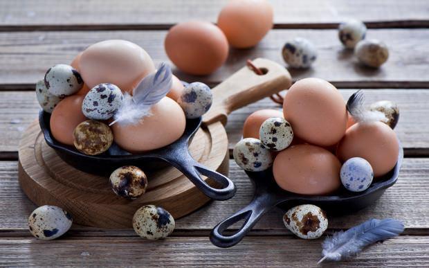 bıldırcın yumurtası nasıl tüketilir