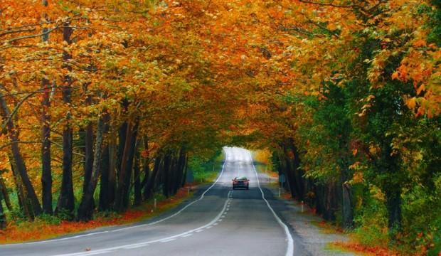 Sonbaharda fotoğraf çekmek için en iyi 10 rota