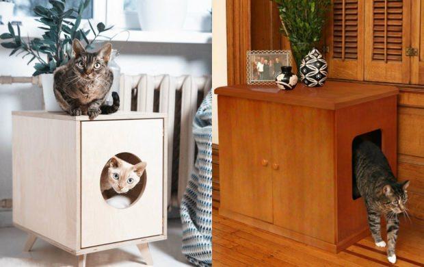 kediler için ev dekorasyonu