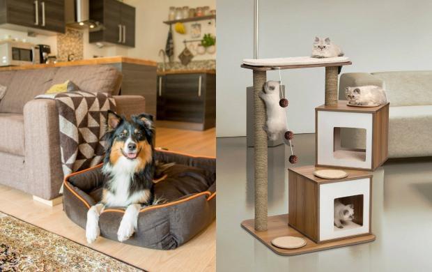 köpekli evler için halı