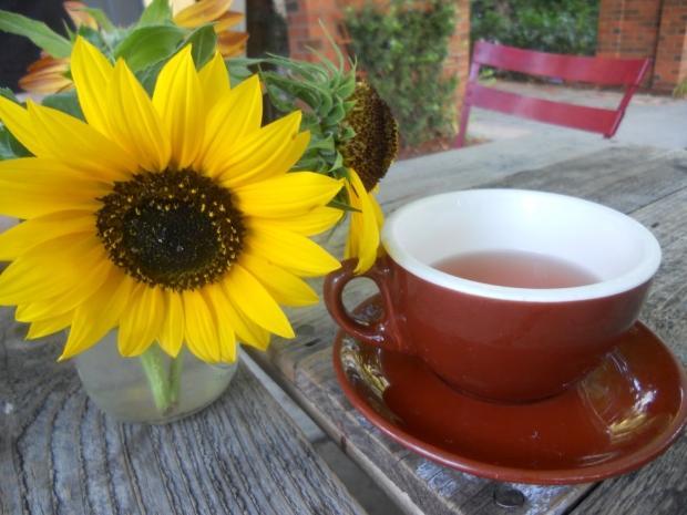 ayçiçeği çayı