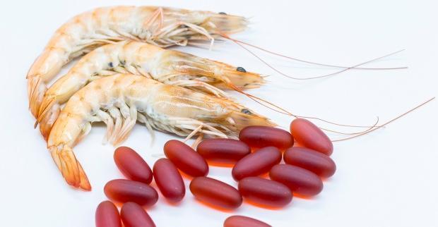 krill yağı ne işe yarar