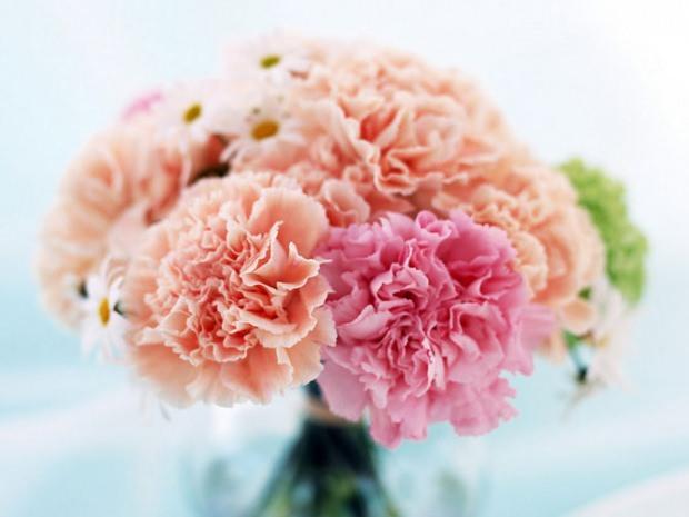 çiçek seçerken nelere dikkat edilir