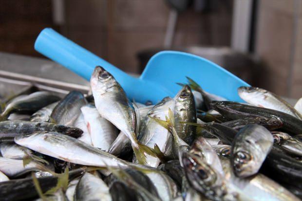 İstavrit balığı nasıl temizlenir
