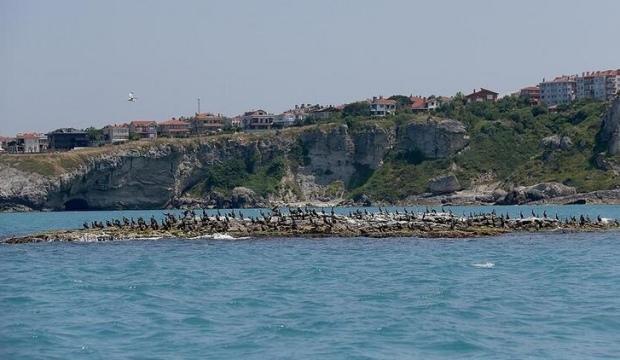 İBB, ünlü sahilin parkını 22.7 milyon TL'den satışa çıkardı