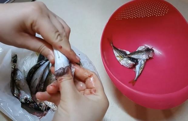 İstavrit balığını ayıklama yöntemi