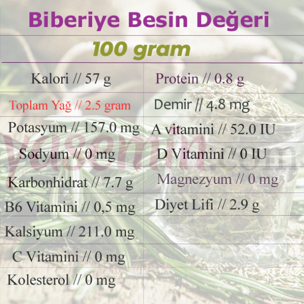 biberiye besin değeri