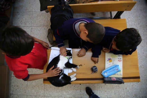 Derslerde yorgun düşen Hüsnü'ye öğrenciler masaj yapıyor.