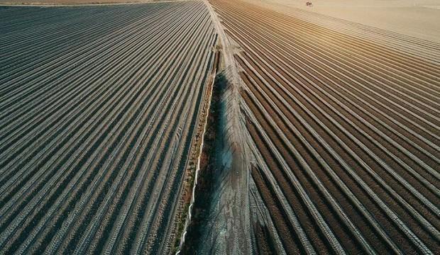 Tarımsal istihdam projesi sona erdi