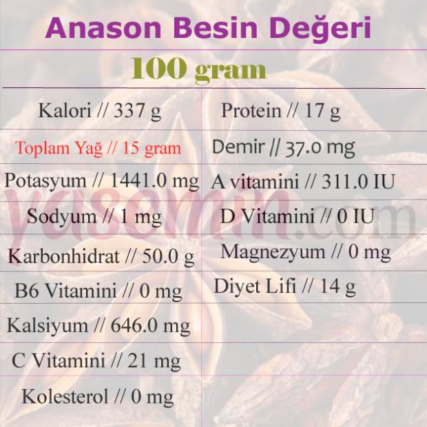 ANASON BESİN DEĞERİ