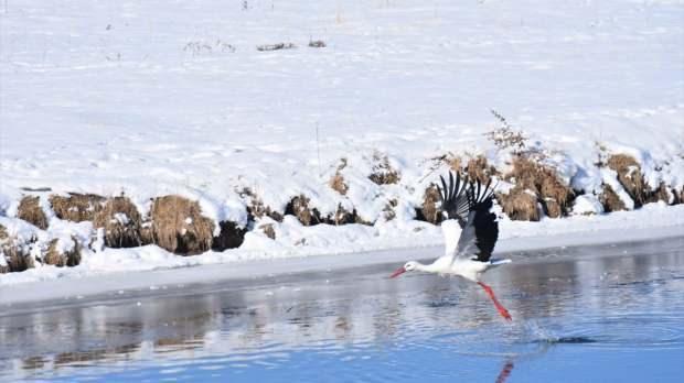 Kars hava durumu - Kars'ta okullar tatil mi?