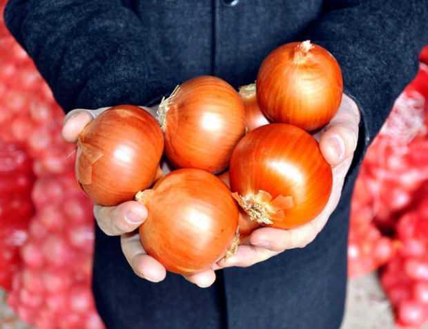 Soğan nasıl muhafaza edilir?