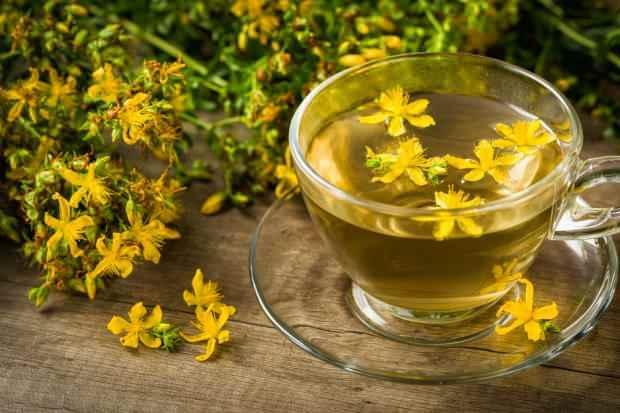 sarı kantaron çayı yapıldığında kaynatılmaz. Kaynatıldığında içeriğindeki bazı zehirli maddeler hareketlenir. Bu yüzden kaynamış suya ilave edilerek demlenir.