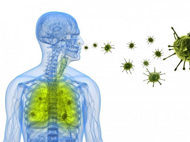 corona virüsü burundan akciğerlere yerleşir