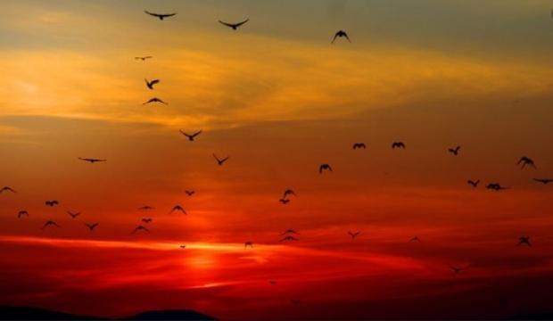 kuşluk namazı ne zaman kılınır?