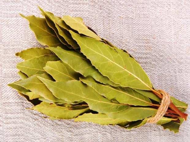 defne yaprağı en çok kozmetik alanda kullanılır