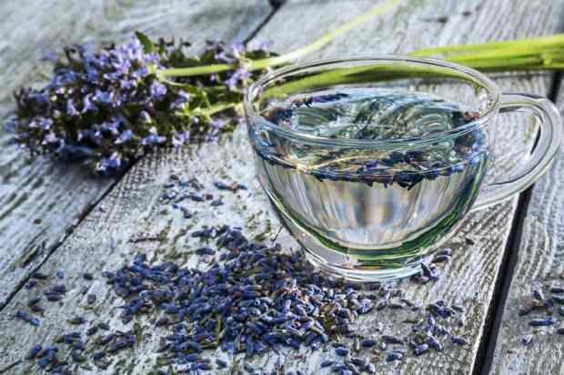 lavanta çayı kronik uykusuzluğa iyi gelir