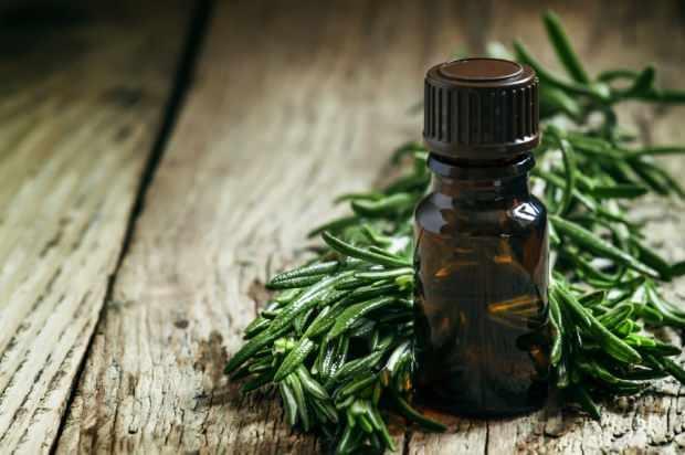 çay ağacı yağı sivilce ve leke tedavisinde kullanılır
