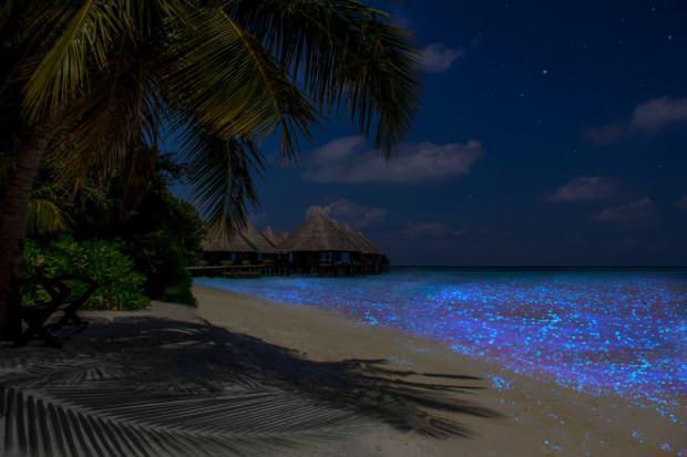 Maldivler Vaadhoo Adası