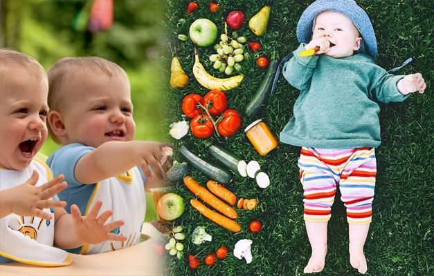 6 aylık ek gıda dönemi listesi