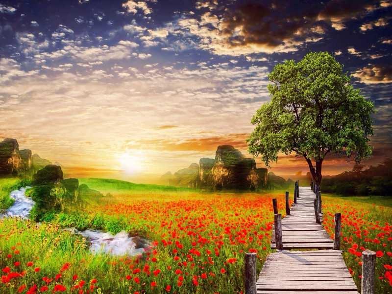 Cennette ne var? İnsanlar cennette ne yapacak?