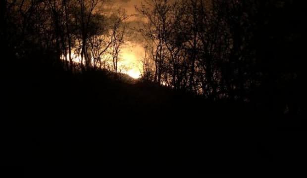 Manisa'daki orman yangınında 1 hektarlık alan zarar gördü 1