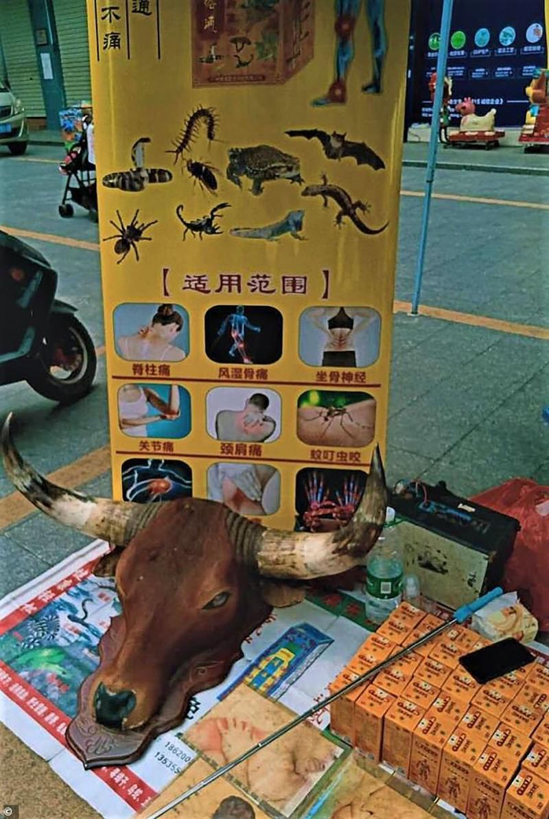 Dongguan'daki görüntü....