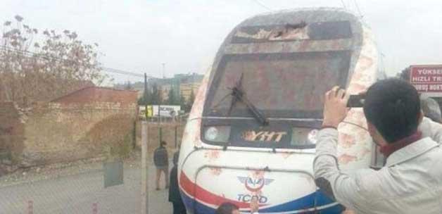 Hızlı tren kuş sürüsüne çarptı
