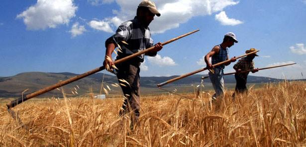 Maliye Bakanlığından çiftçiye müjde