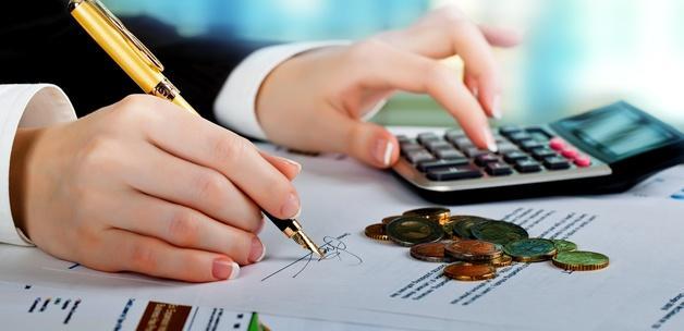 Bütçe gelirleri yüzde 10,8 arttı