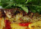 Tavada dil balığı