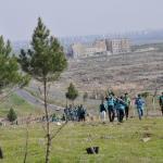 Mahkumlar fidanları toprakla buluşturdu