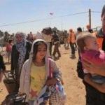 152 bin Suriyeli bebek Türkiye'de doğdu!