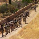 ABD'den YPG haberlerine açıklama geldi!